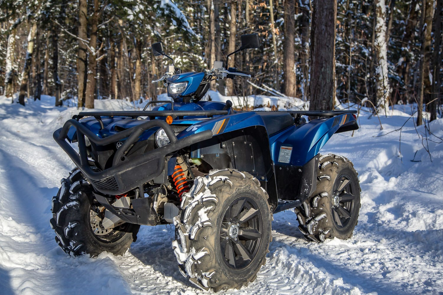 2019 Yamaha Grizzly SE Review