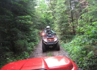 Stay on the trail or stay home