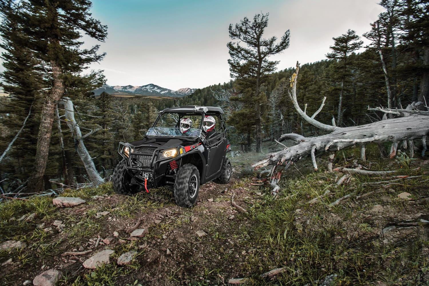 Unfairly overlooked entry-level quads
